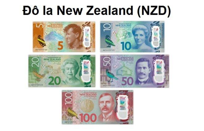 đô la New Zealand (NZD)